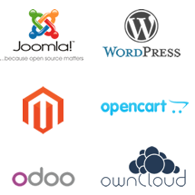 We specialize in open-source platforms such as Joomla, Wordpress, Magento, OpenCart, Odoo (formerly OpenERP), OwnCloud